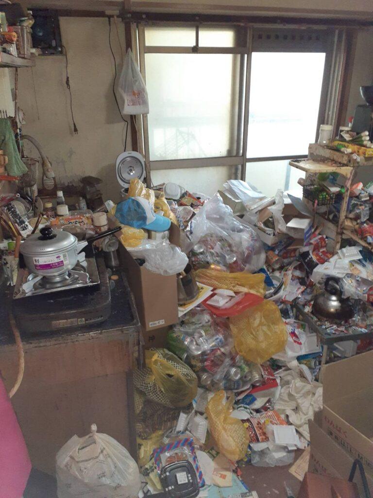 ゴミ屋敷の様子