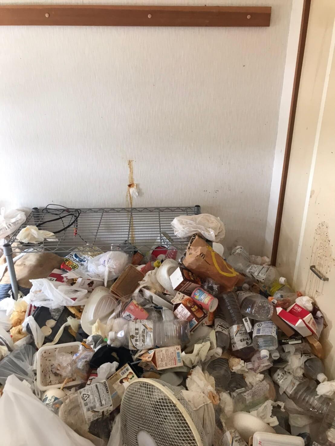 ゴミ屋敷回収前の写真